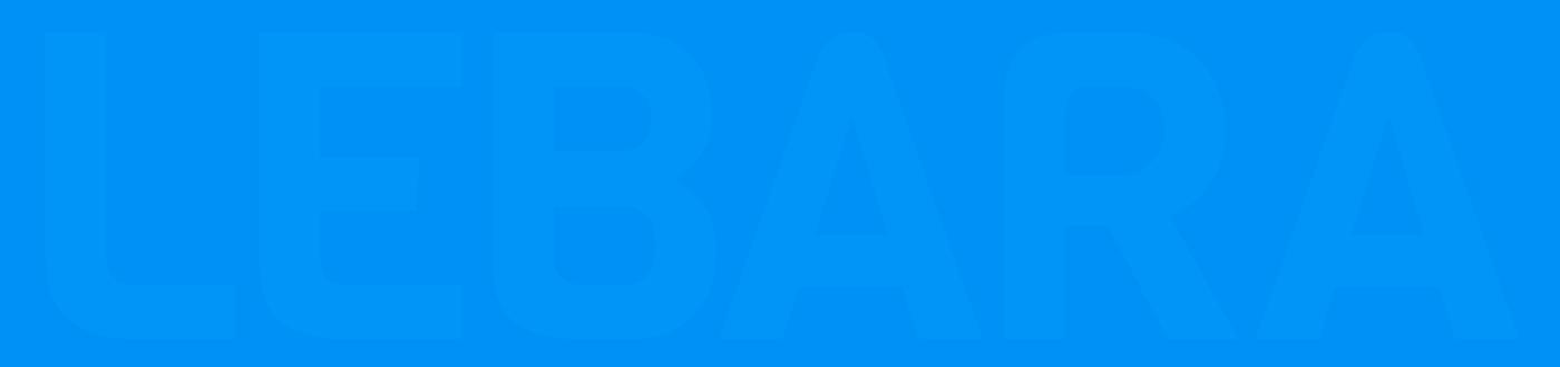 """Logo for """"Lebara Mobile"""""""